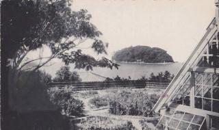 常盤館の庭から見た橋の無い竹島(絵はがき。広中所蔵)