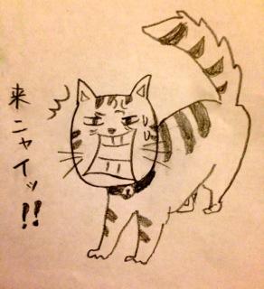 coffeecats11