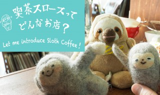 slothintroduce